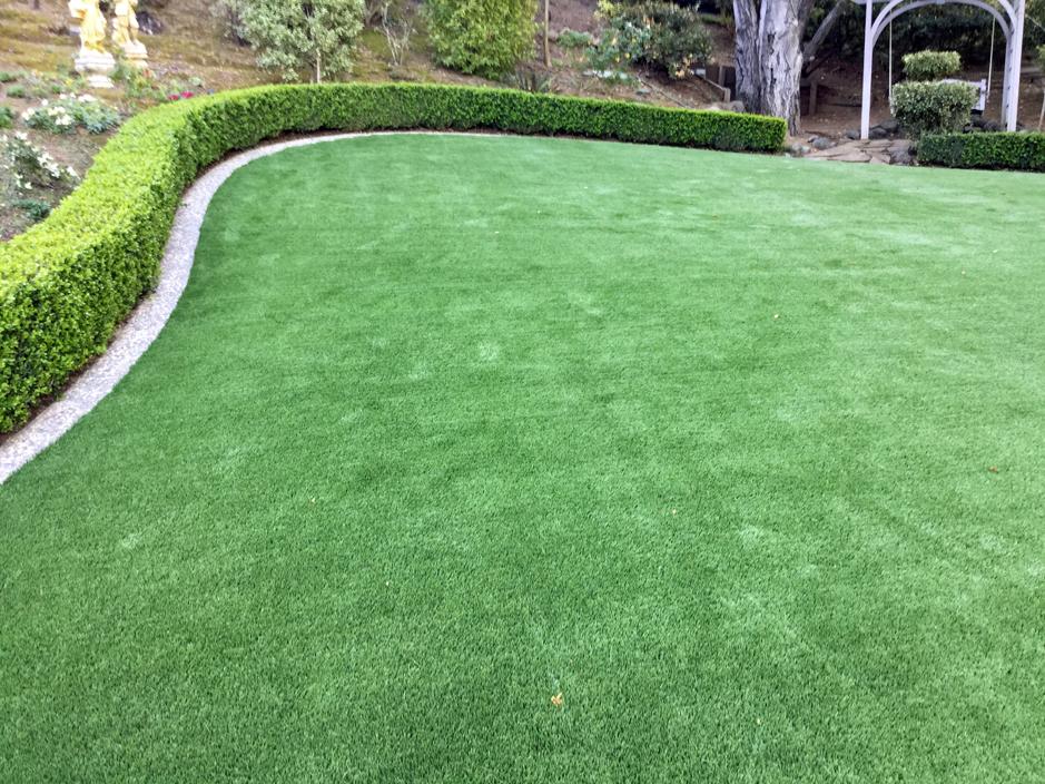 Landscaping florida fake grass for Garden designs with artificial grass