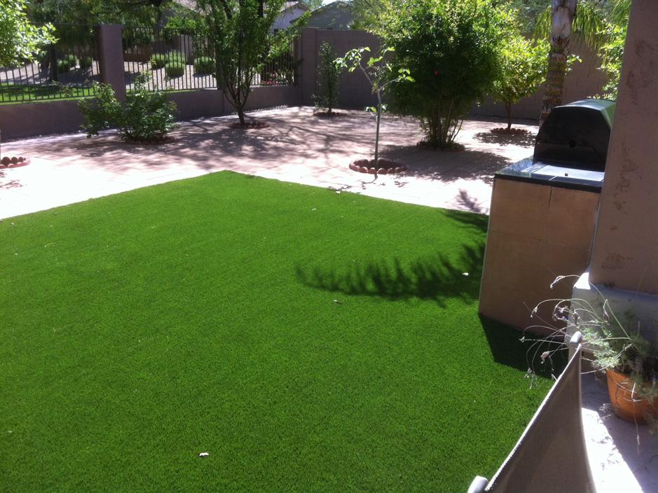 Landscaping Florida Fake Grass