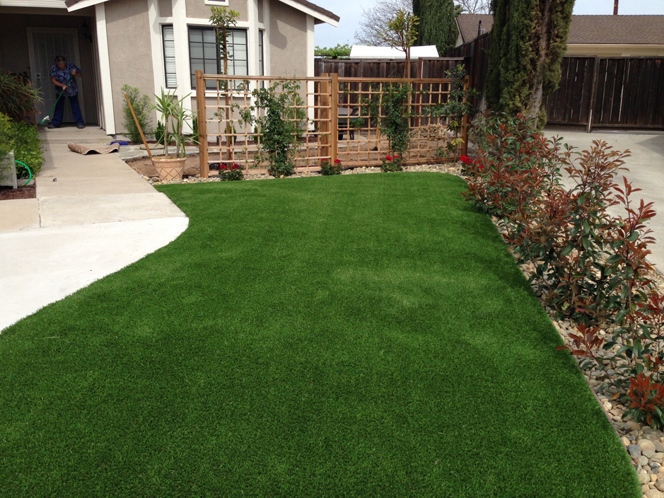 Landscaping Florida Fake Grass