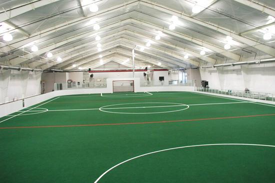 artificial turf soccer field. Indoor Soccer Field Turf. Artificial Turf ?